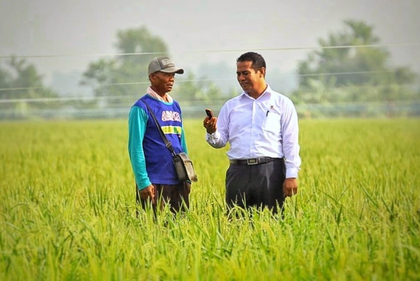 Menteri Pertanian Amran Sulaiman saat melakukan blusukan ke petani di daerah