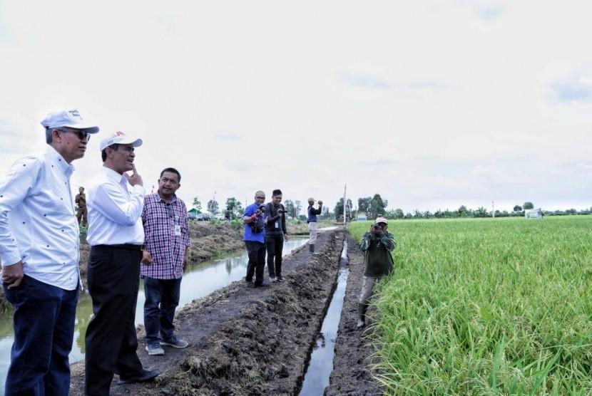 Menteri Pertanian Amran Sulaiman saat mengecek kesiapan pilot pengembangan lahan rawa di Desa Jejangkit, Kecamatan Jejangkit, Kabupaten Barito Kuala, Kalimantan Selatan, Selasa (16/10)
