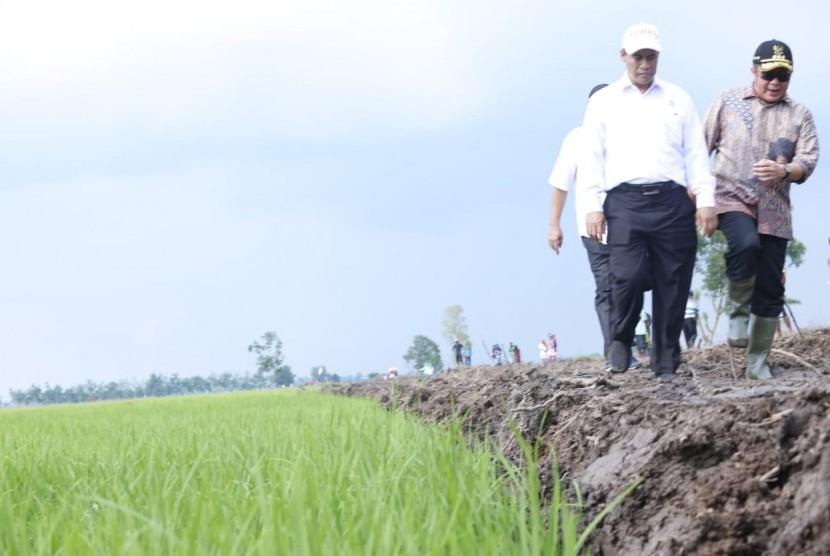 Menteri Pertanian Andi Amran Sulaiman