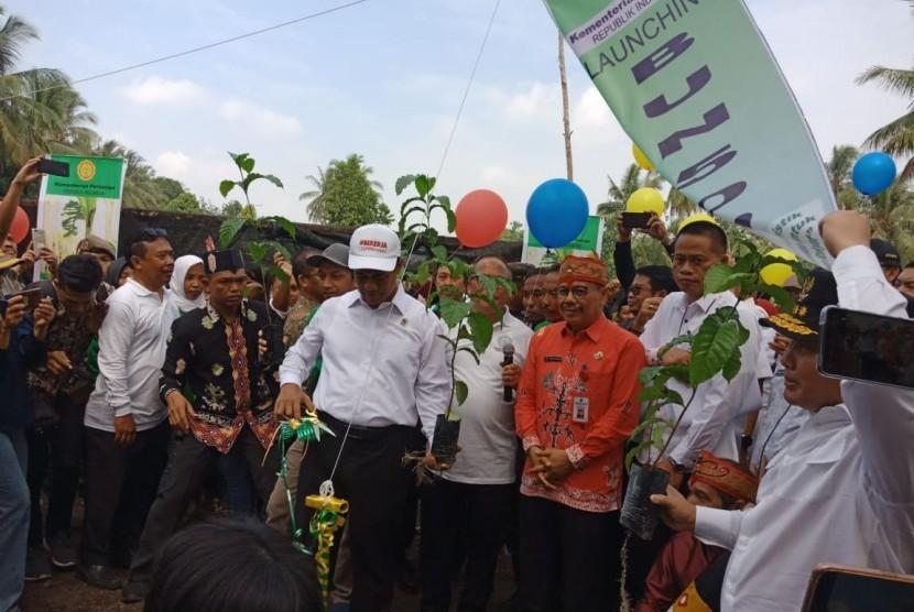 Menteri Pertanian Andi Amran Sulaiman meluncurkan program pemberian bibit unggul sebesar 500 juta selama lima tahun atau Bun500, di Palangka Raya, Kalimantan Tengah, Kamis (18/7).