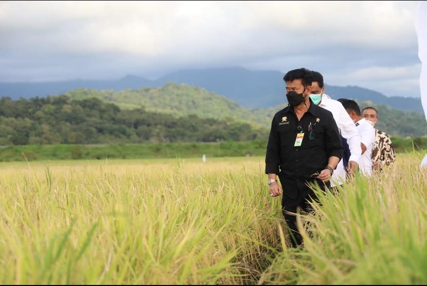 Menteri Pertanian Syahrul  Yasin Limpo menyatakan bahwa realisasi produksi sejumlah komoditas pangan utama pada tahun 2020 mengalami peningkatan.