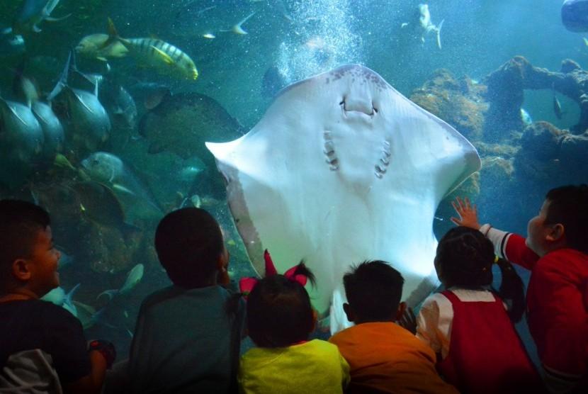 Menyambut liburan sekolah, Ancol menggelar Camping Under the Sea.