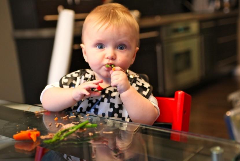 Metode makan BLW dipandang lebih menyenangkan bagi bayi karena lebih bebas stres.