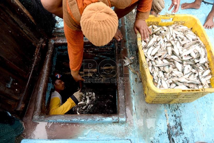 Nelayan membongkar muatan ikan di Pelabuhan Muara Angke, Jakarta Utara, Ahad (13/12).  (Republika/Wihdan)