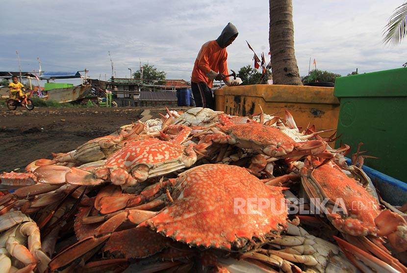 Nelayan mengemas rajungan hasil tangkapannya di desa Pabean udik, Indramayu, Jawa Barat, Kamis (2/2). Sejak dua pekan terakhir harga rajungan mengalami kenaikan dari harga Rp30 ribu per kilogram menjadi Rp70 ribu per kilogram karena berkurangnya pasokan ha
