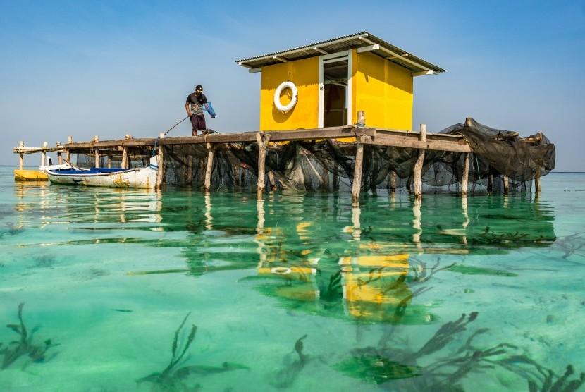 Nelayan pembudidaya karamba ikan memberi pakan ikan kerapu di tepi Pantai Lego, Karimunjawa, Jepara, Jawa Tengah, Jumat (27/7)