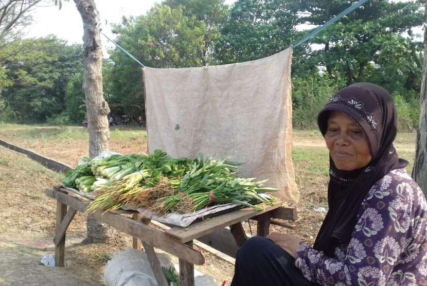 Nenek Diah, menjual sayuran hasil tanamannya sendiri, kawasan BKT, Jakarta Timur, Jumat (10/8).