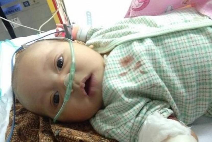 Orang tua dari Muhammad Hafizh meyakini asap rokok menyebabkan penurunan pesat kesehatan anaknya.