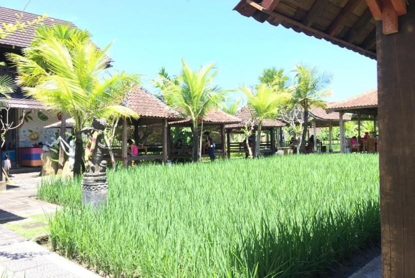 Padi menghampar menjadi penyejuk mata saat bersantap di Warung Mogan, Denpasar, Bali.