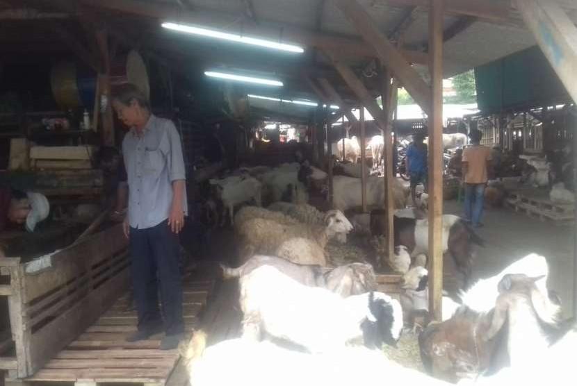 Pasar Kambing di Jalan Sabeni, Tanah Abang, Jakarta Pusat, Rabu (8/8).