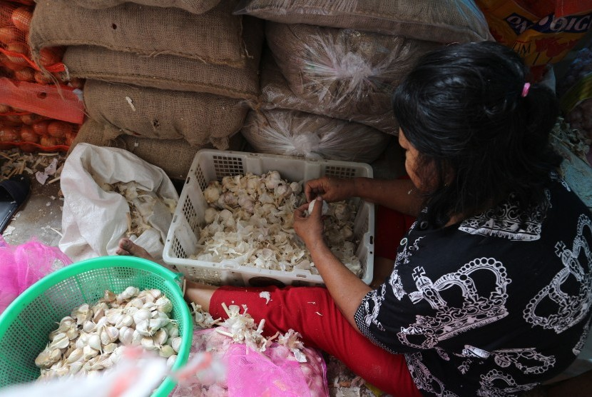 Pedagang mengupas kulit bawang putih di Pasar Senen, Jakarta Pusat, Rabu (13/3/2019).