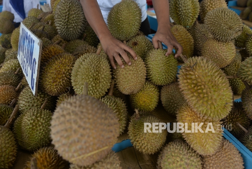 Pedagang menjajakan aneka durian di Sentra Durian Kalibata, Jakarta Selatan, Rabu (8/2).
