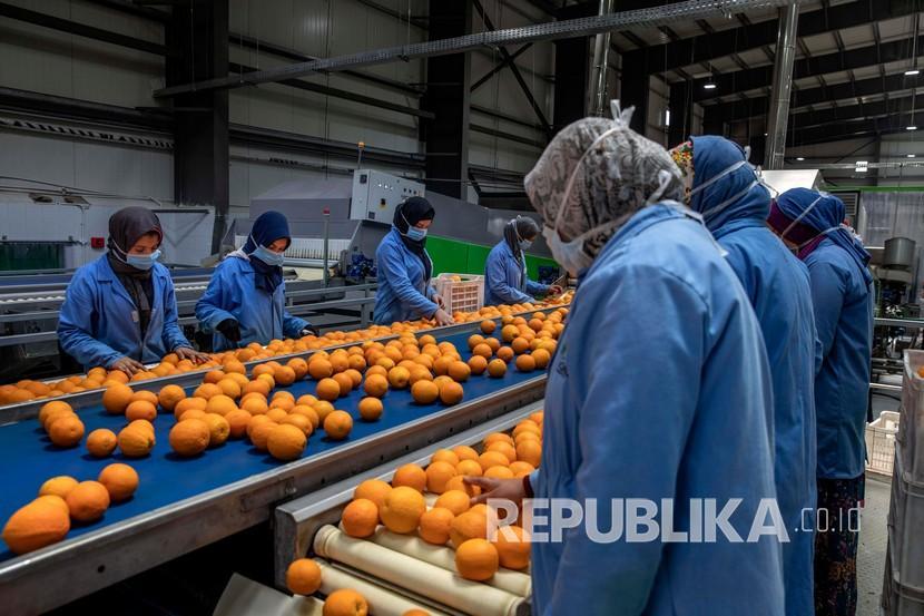 Pekerja dengan memakai masker sebagai upaya pencegahan Covid-19 mengumpulkan jeruk untuk diekspor di sebuah pabrik  perusahaan pengekspor pertanian dan buah Mesir, Gamco di provinsi Mediterania Alexandria, Mesir, Rabu (15/4). Kerja sama perdagangan dan investasi Indonesia-Mesir menunjukkan peningkatan.