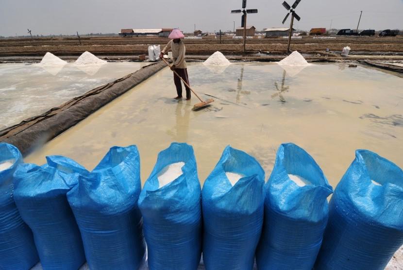 Pekerja memanen garam di tambak dengan sistem Tekhnologi Ulir Filter (TUF) dan pemasangan Geomembran (LDPE) di Desa Kaliwlingi, Brebes, Jawa Tengah, Sabtu (31/10).