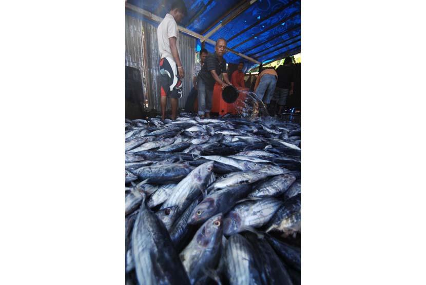 Ikan segar kini dapat diawetkan kesegarannya tidak dengan es balok namun memakai maslaha jel 99