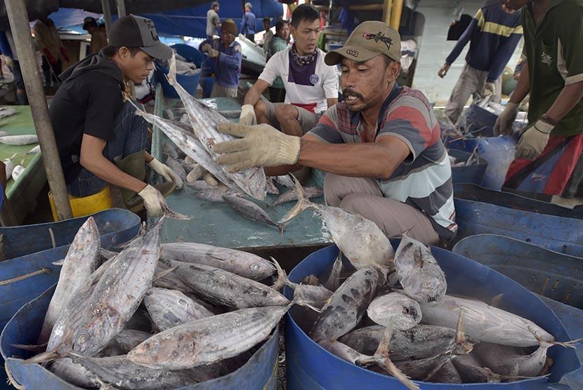 Pekerja memindahkan ikan tuna hasil tangkapan dari kapal di Pelabuhan Muara Baru, Jakarta, senin (5/12).