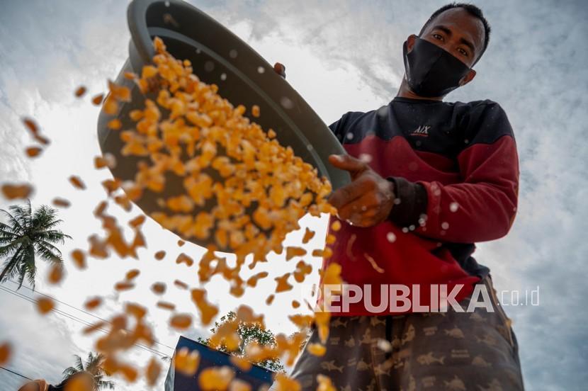 Pekerja mengeringkan jagung yang baru dipipil di Desa Balongga, Sigi, Sulawesi Tengah, Senin (6/9/2021). Kementerian Koordinator Bidang Perekonomian mencatat, realisasi Kredit Usaha Rakyat (KUR) secara nasional khusus untuk sektor pertanian jagung hingga akhir Agustus 2021 telah mencapai Rp1,76 triliun yang disalurkan kepada 72.070 debitur.