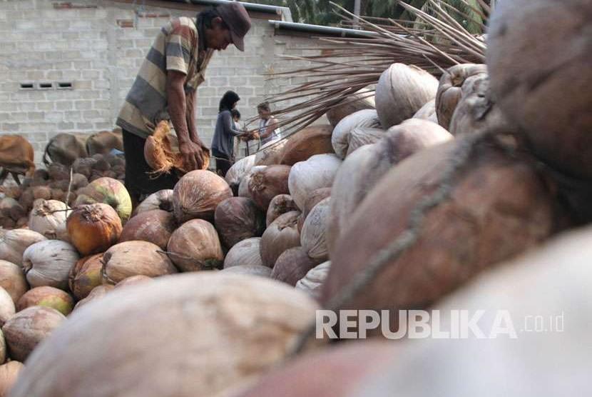 Pekerja mengupas sabut kelapa untuk dijadikan kopra di Desa Lamundre, Watubangga, Kolaka, Sulawesi Tenggara, Minggu (7/10). Produksi buah kelapa yang meningkat mengakibatkan harga kopra kering turun dari Rp6.000 menjadi Rp4.800 per kilogram.