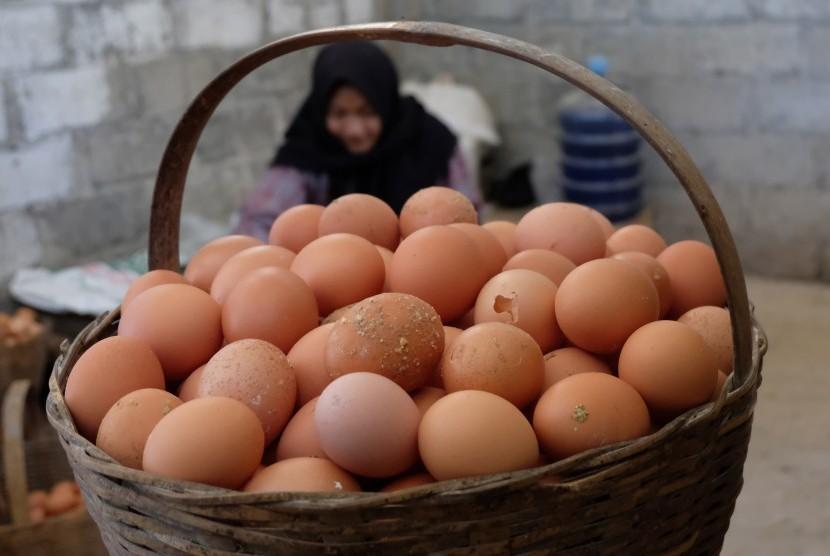 Pekerja menyortir telur di sebuah peternakan ayam petelur Mangli, Muntung, Candiroto, Temanggung, Jawa Tengah Jumat (24/5/2019).
