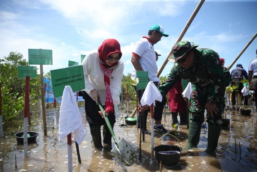 Penanaman mangrove oleh Shobibah Rohmah Nahrowi (Istri Menteri Pemuda dan Olahraga RI) bersama Ibu Trisna Willy Lukman Hakim (Istri Menteri Agama RI) di Pantai Pantai Cemara Kecamatan Lembar Kabupaten Lombok Barat, Senin (11/3).