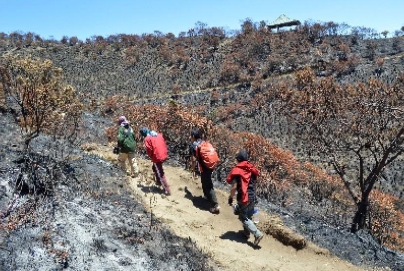 29+ Pendakian Gunung Lawu Via Cemoro Sewu Images