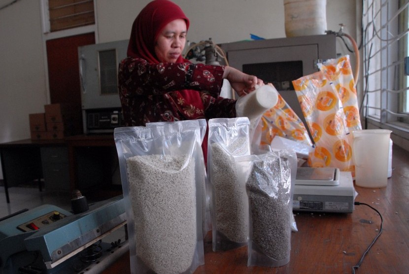 Peneliti IPB melakukan pengemasan beras analog, salah satu beras tiruan yang diciptakan IPB di Laboratorium Pangan, Kampus IPB Dramaga, Bogor, Jabar, Rabu (27/5).