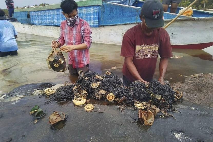 Peneliti memisahkan sampah plastik dari perut paus yang terdampar di Taman Nasional Wakatobi, di Sulawesi Tenggara. Temuan plastik dalam perut paus membuat dunia semakin khawatir dengan limbah plastik di laut.