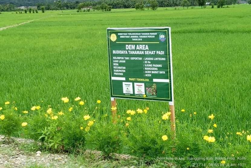 Pengembangan budidaya tanaman sehat untuk mitigasi risiko serangan hama wereng batang cokelat (WBC)