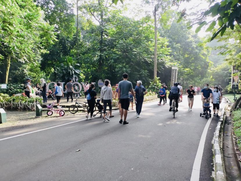 Pengunjung berolahraga di Kebun Raya Bogor, Ahad (17/10).