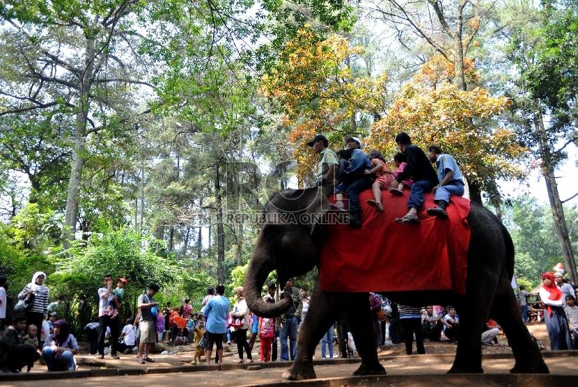 Pengunjung memadati Kebun Binatang Bandung, Jalan Taman Sari Bandung, Jawa Barat.