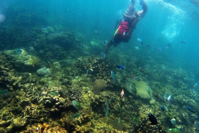 Pengunjung menikmati suasana bawah laut Pantai Beach Club di Tanjung Lesung ,Pandeglang, Banten, Selasa (26/9).