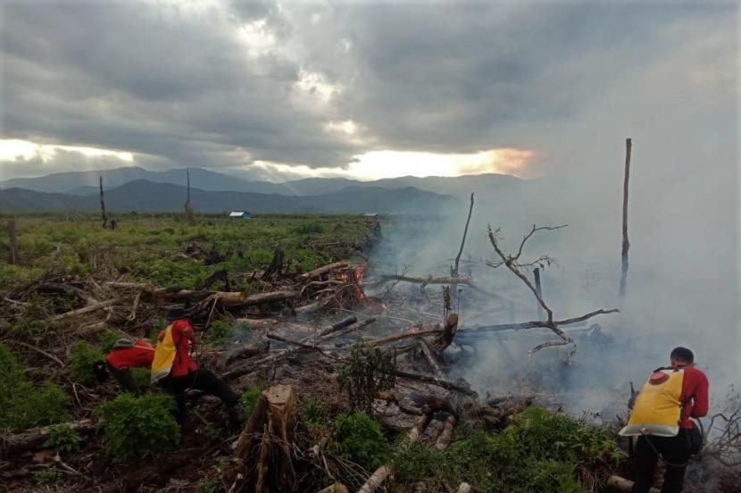 Personel Manggala Aqni melakukan pemadaman api yang membakar lahan gambut di Kelurahan Tinengi, Kecamatan Tinondo, Kolaka Timur, Sulawesi Tenggara. Kebakaran hutan dan lahan (Karhutla) gambut terjadi di wilayah itu menghanguskan sekitar dua hektare lahan dan belum berhasil dipadamkan akibat cuaca panas dan angin kencang.