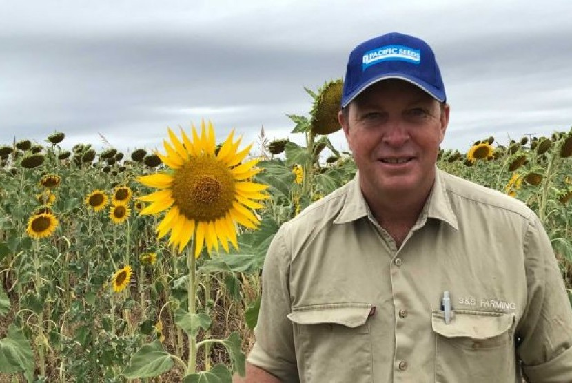 Petani bunga matahari Australia Craig Smith.