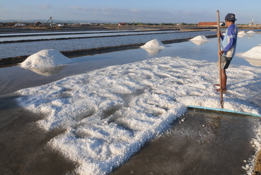 Petani memanen garam di Desa Bunder, Pamekasan, Jawa Timur, Selasa (13/8/2019).
