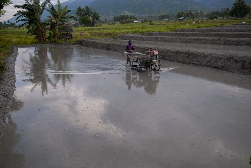 Petani membajak sawah tadah hujannya dengan traktor tangan di Desa Porame, Sigi, Sulawesi Tengah, Selasa (16/7/2019).