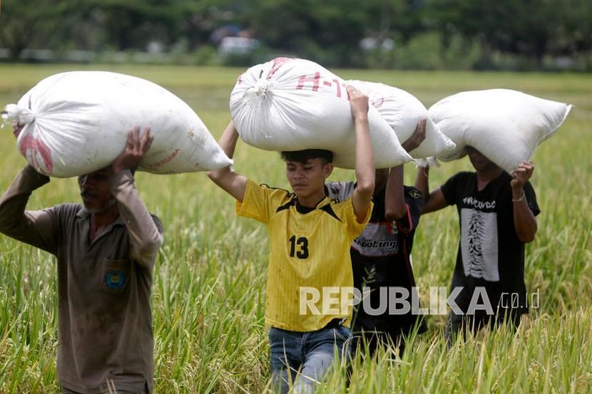 Polda DIY Cari Bantuan untuk Membeli Beras Petani (ilustrasi).