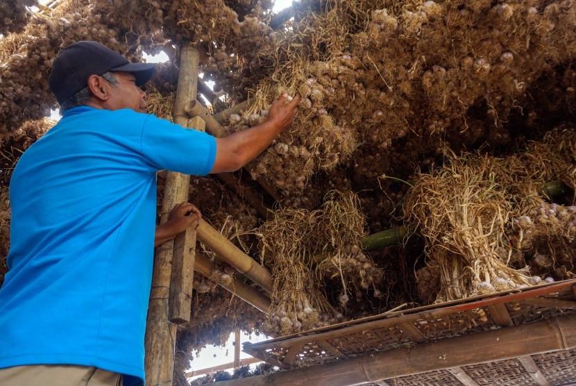 Petani memilah bawang putih di gudang penyimpanan di Desa Gunungsari, Bawang, Kabupaten Batang, Jawa Tengah, Rabu (17/7/2019).