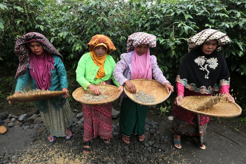 Petani menampi kopi arabika usai panen massal dalam rangkaian Festival Panen Kopi Gayo di Rembele, Bener Meriah, Aceh, Rabu (21/11).