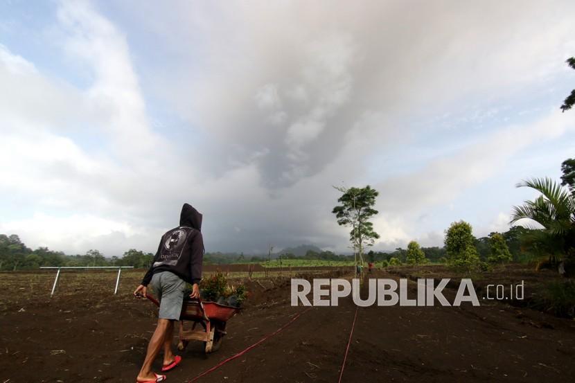 Petani mendorong gerobak di lahan pertanian dekat Gunung Raung di Songgon, Banyuwangi, Jawa Timur, Kamis (11/2/2021). Gunung Raung saat ini berstatus Waspada (level II).