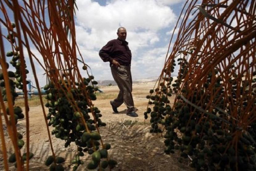 Petani Palestina di Tepi Barat diusir Israel.