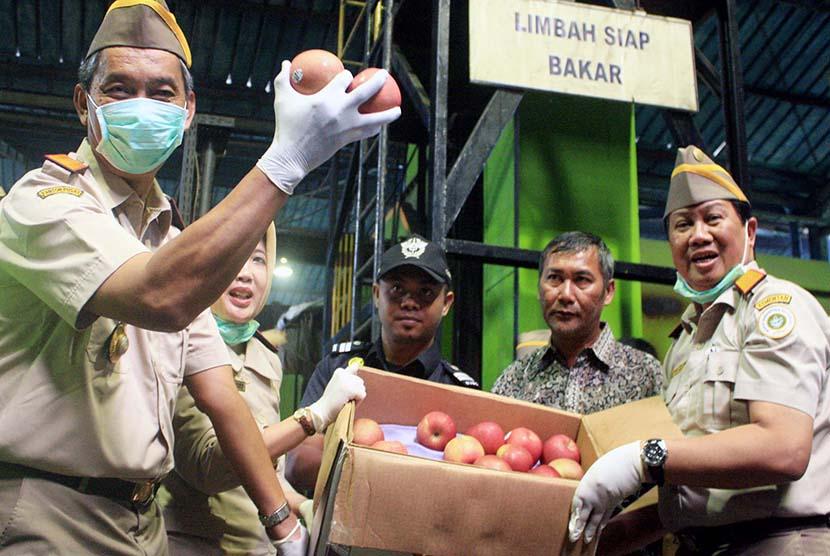 Petugas Badan Karantina Kementerian Pertanian menunjukkan buah apel segar asal Amerika Serikat yang akan dimusnahkan di salah satu pabrik pengolahan dan pemanfaatan limbah B-3 di Karawang, Jabar, Jumat (6/3).  (Antara/M.Ali Khumaini)