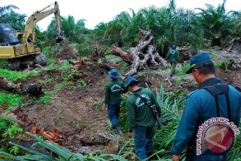 Petugas bersenjata mengawal pembongkaran kebun kelapa sawit ilegal pada Operasi Balai Taman Nasional Tesso Nilo di Desa Bagan Limau, Kabupaten Pelalawan