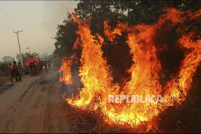 Lahan yang terbakar (ilustrasi)