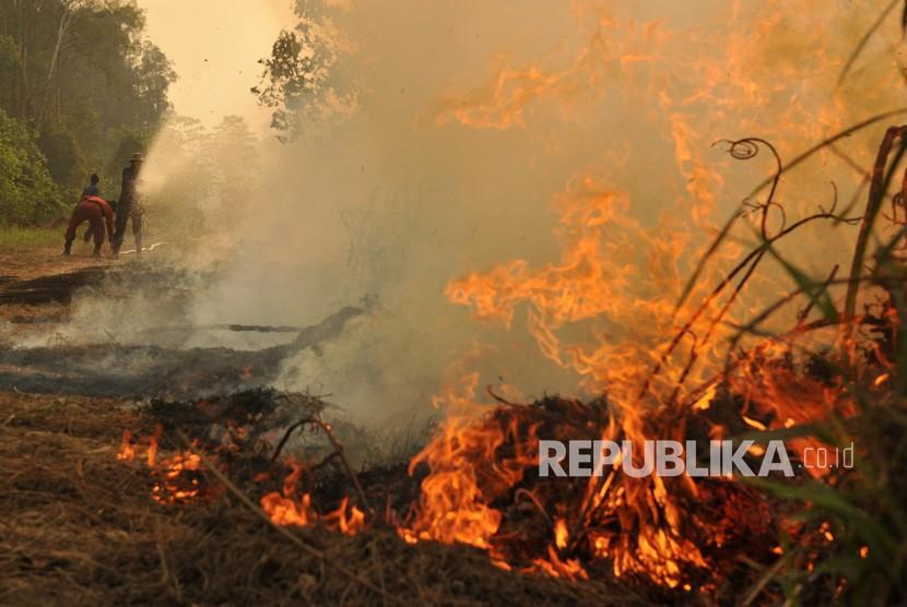Petugas Manggala Agni Daops Kota Jambi mengupayakan pemadaman kebakaran lahan gambut di Kumpeh Ulu, Muarojambi, Jambi, Kamis (15/8/2019).