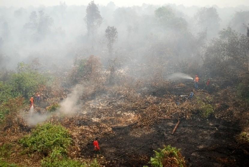Petugas memadamkam api kawasan hutan dan lahan gambut di Rimbo Panjang, Kampar, Riau.