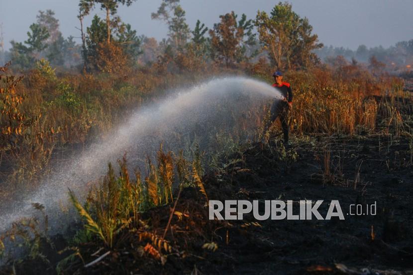 Petugas pemadam kebakaran melakukan proses pendinginan lahan yang terbakar (ilustrasi)