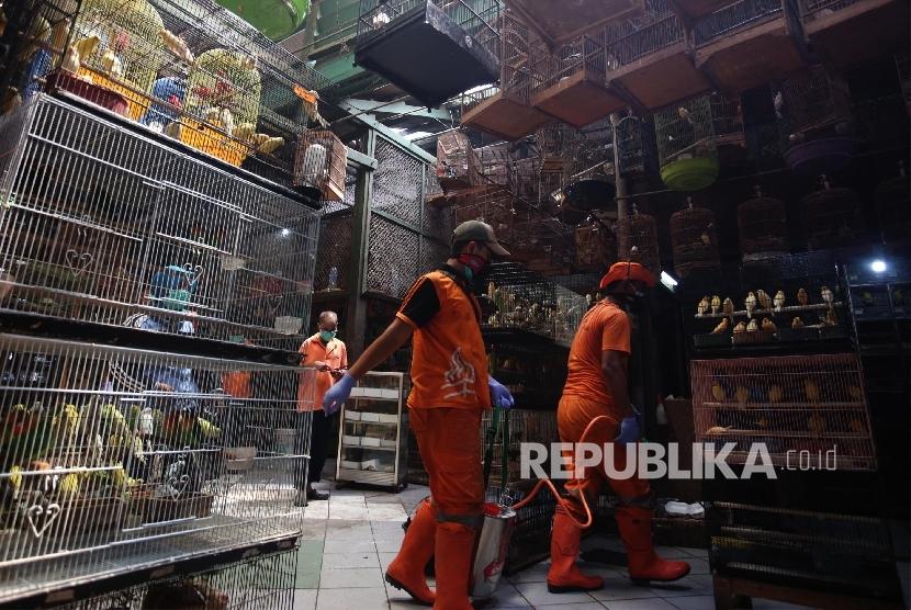 Penyelundupan Seribu Ekor Burung Langka Digagalkan
