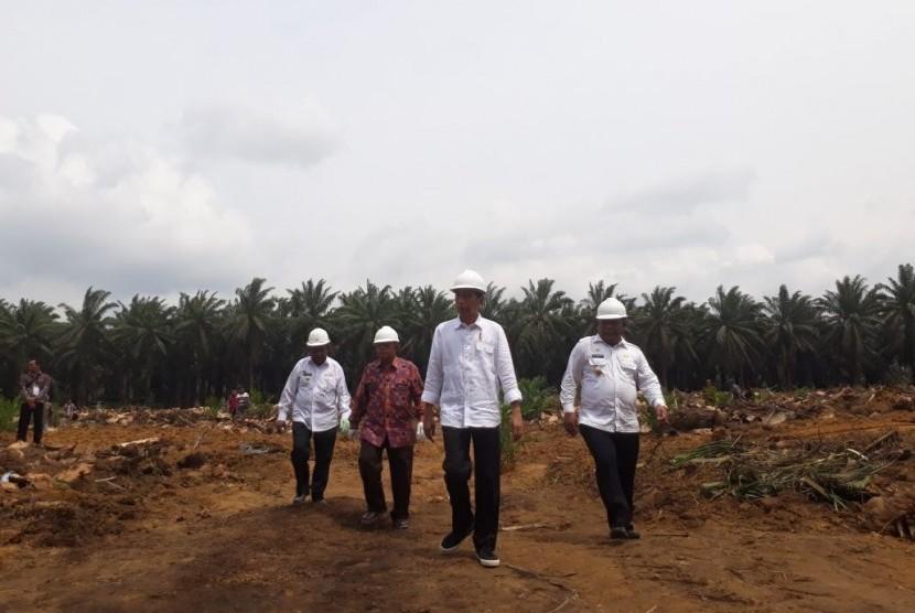 Presiden Joko Widodo meresmikan secara langsung peremajaan perkebunan kelapa sawit, di Kabupaten Rokan Hilir, Rabu (9/5).