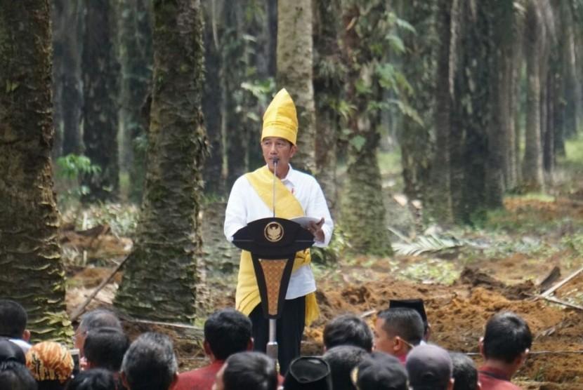 Presiden Joko Widodo saat memberikan sambutan pada peresmian peremajaan kelapa sawit di Rokan Hilir, Riau, Rabu (9/5).