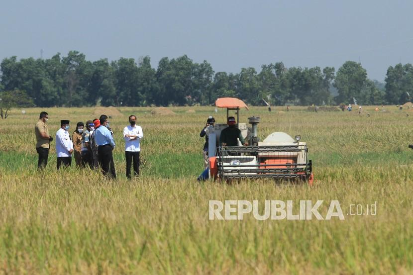 Presiden Joko Widodo (tengah) berbincang dengan petani saat menghadiri panen raya padi di desa Wanasari, Bangodua, Kabupaten Indramayu, Jawa Barat, Rabu (21/4/2021).